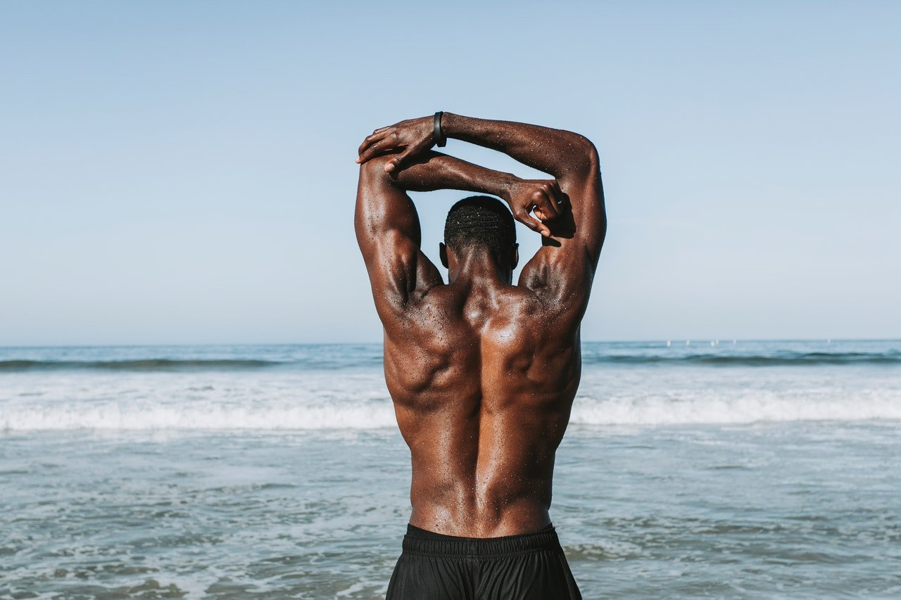 back workout gym